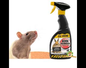 Rattenpflege