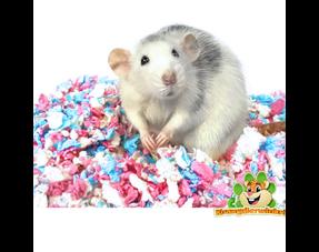 Ratten Nestmateriaal