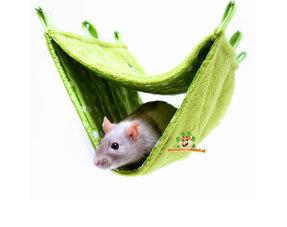 Rats Hammocks