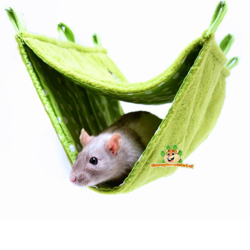 Rattenschinkenloch und Hängematten für Ratten