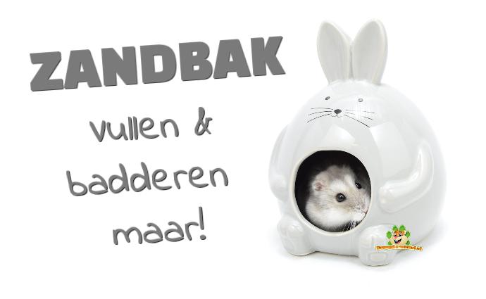 Hamster- und Zwerghamsterbadehaus oder Sandkasten und Sandbad