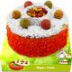 JR Farm Rodent Cake