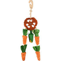 Carrot Dreamcatcher