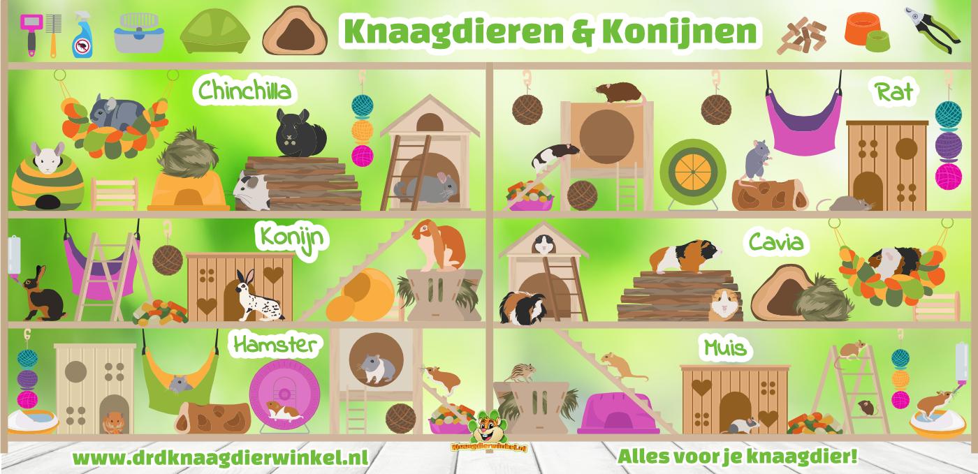 benodigdheden voor muis, hamster, gerbil, rat, cavia, konijn en chinchilla