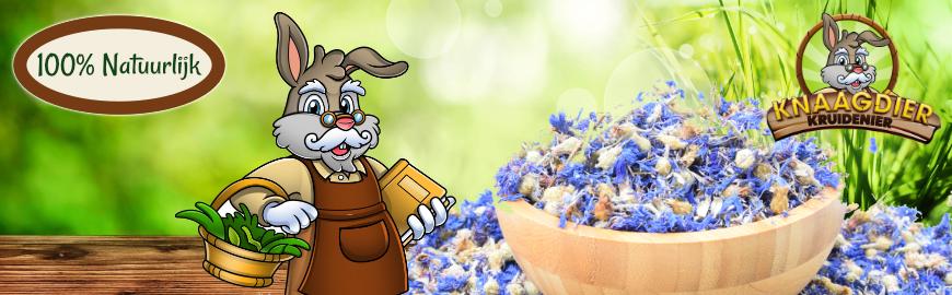 De Knaagdier Kruidenier voor de hoogste kwaliteit kruiden