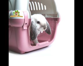 Transportbox Kaninchen
