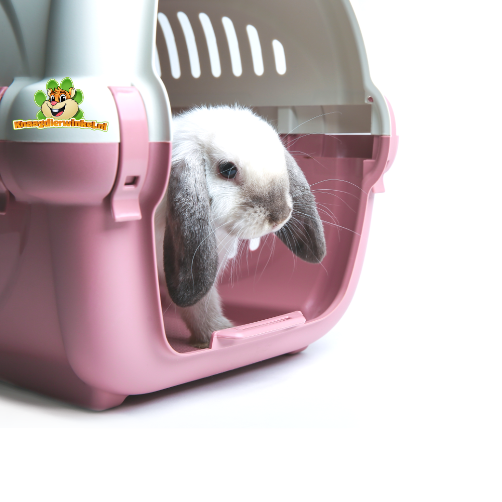 Kaninchen-Transposrtobox und Transportbox