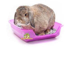 Kaninchen Toilettenbettwäsche