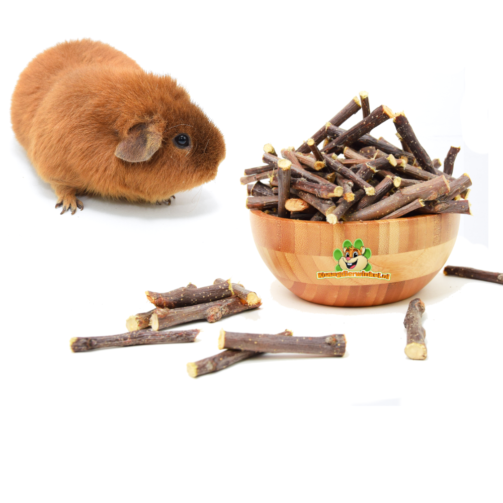guinea pig gnawing material and guinea pig wood