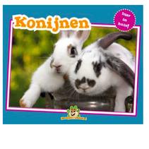 Tier im Haus! Kaninchen