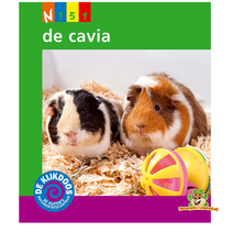 Kijkdoos De Cavia
