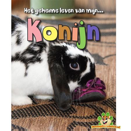 My Rabbit's Secret Life