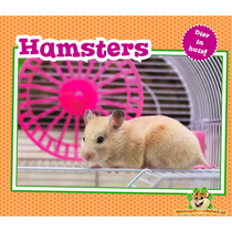 Animal in the House! Hamsters