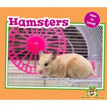 Dier in Huis! Hamsters
