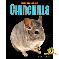 Mijn Huisdier Chinchilla