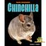My Pet Chinchilla