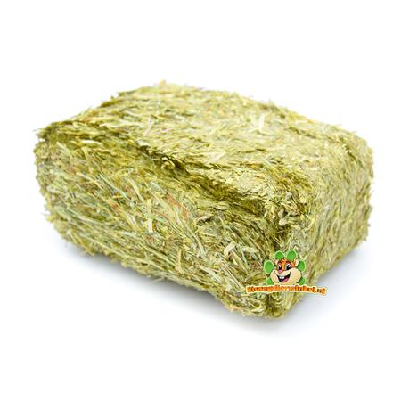Pre Alpin Grassland Herbs Grass Block