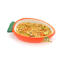 Carrot Food bowl 13 cm