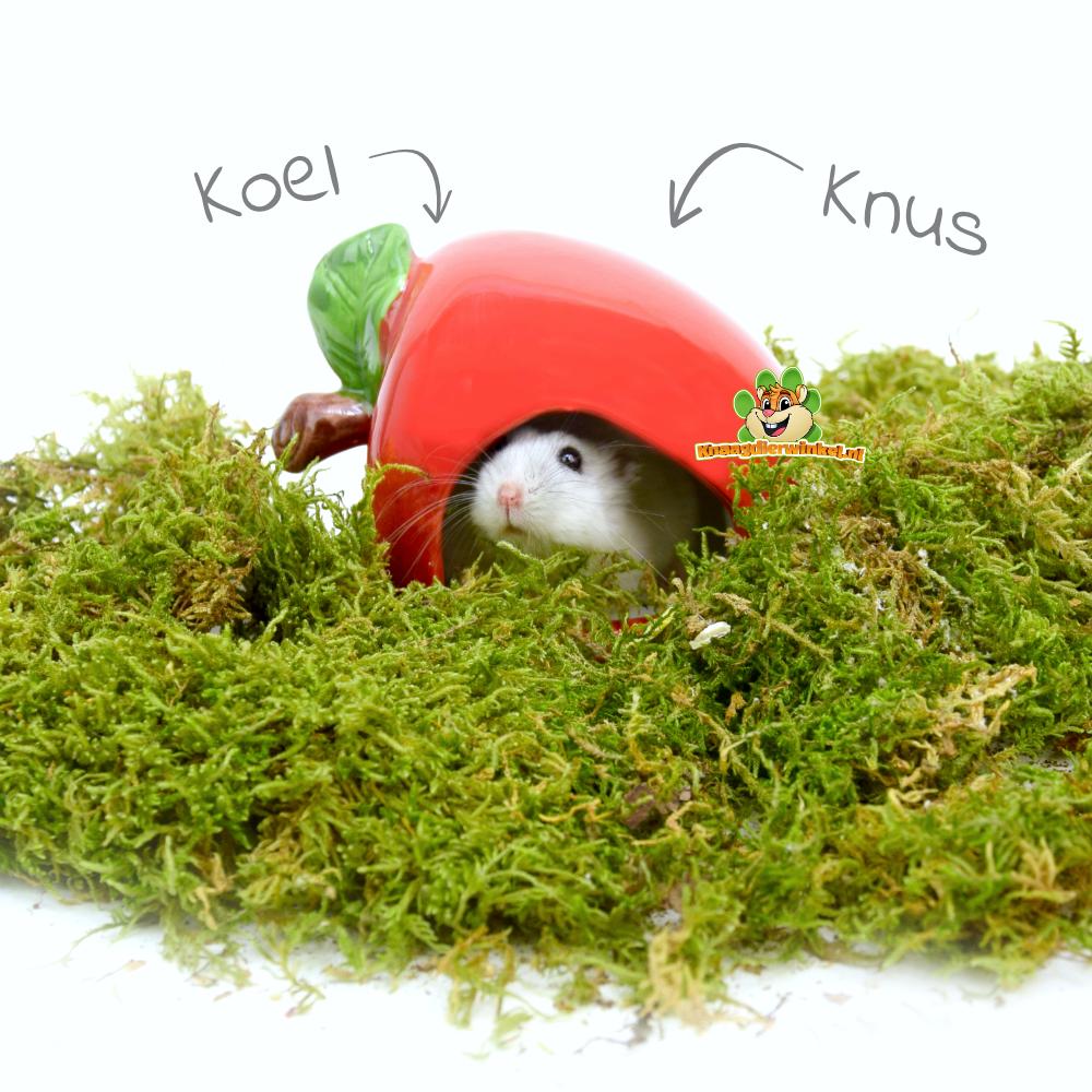 Happy Pet Keramiek Huisje Appel