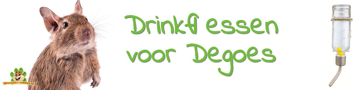 degoe drinkfles en knaagvaste drinkflessen voor degoes