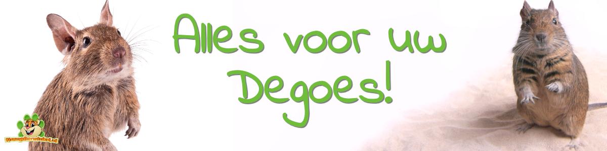 degu webshop for degu food herbs and toys