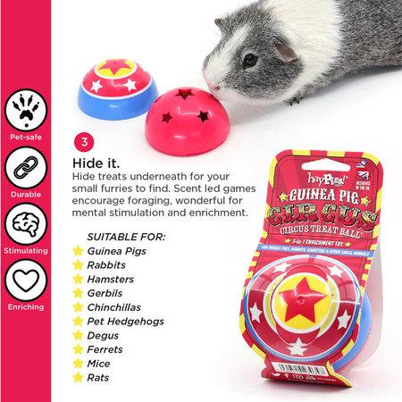 HayPigs Circus Snack Ball 8 cm