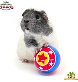 HayPigs Circus Snackbal 8 cm