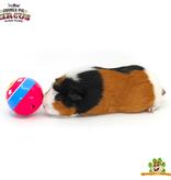 HayPigs Zirkus Snack Ball 8 cm