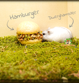 Lolo Pets Hamburger