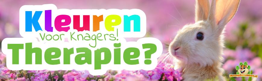 Kleurentherapie voor knaagdieren & konijnen