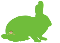 konijnen webshop