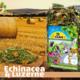 JR Farm Echinacea & Luzern