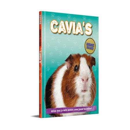 Corona Meerschweinchen Handbuch