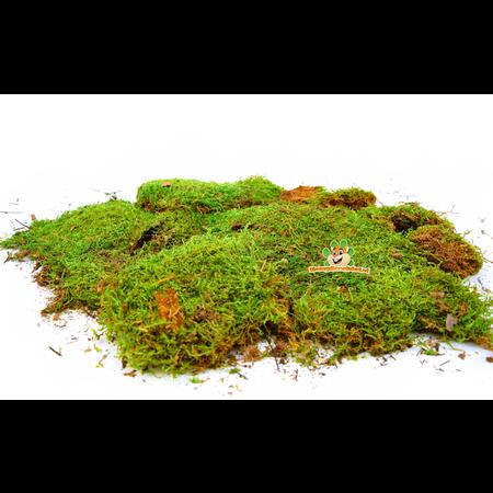 Knaagdierwinkel® Dried Moss 400 grams
