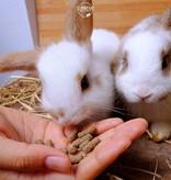Supreme Selective Rabbit Junior