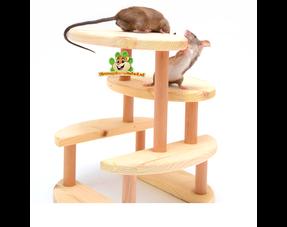 Mäusespielzeug