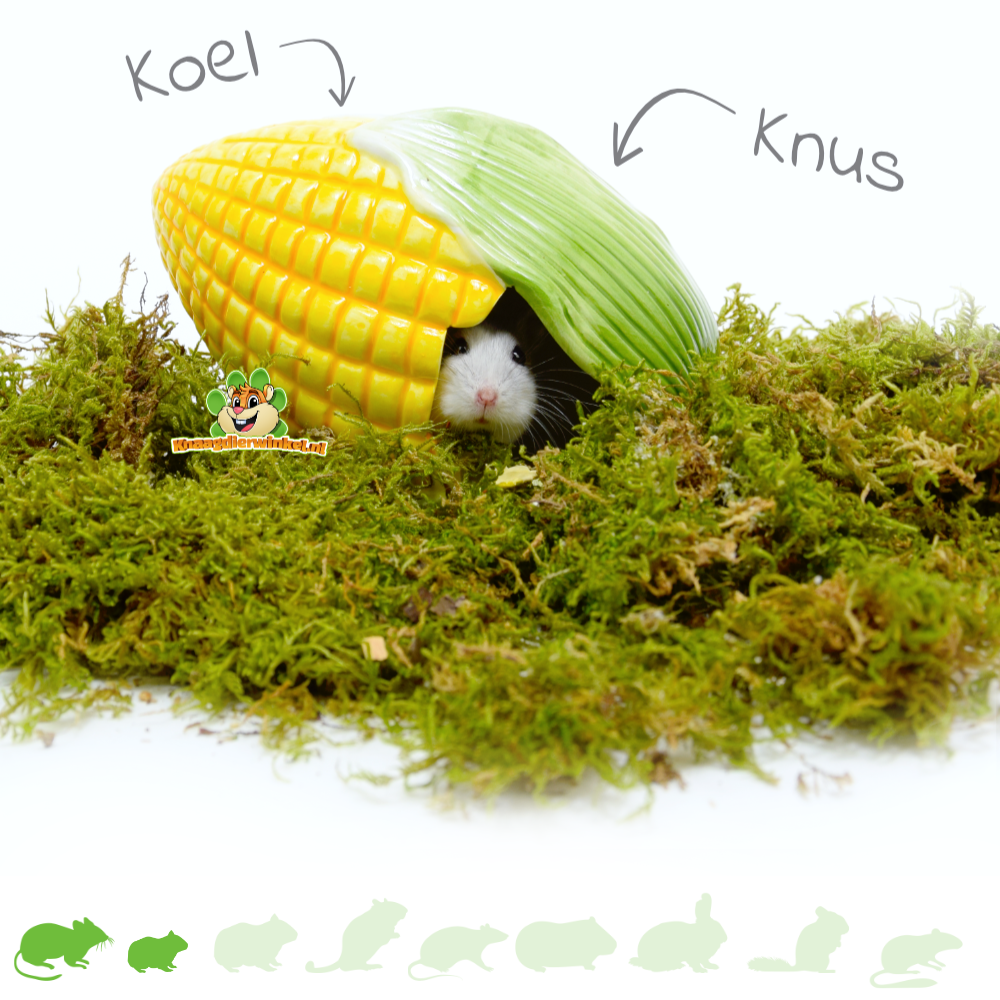 Happy Pet Keramiek Huisje Mais