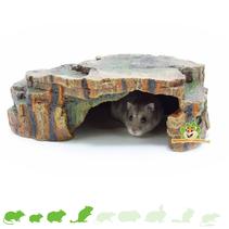 Rainforest Shelter 24 cm