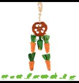 Carrot Dreamcatcher