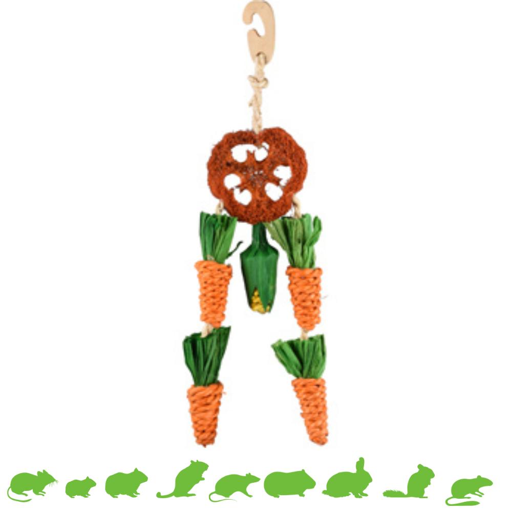 Karotten-Traumfänger
