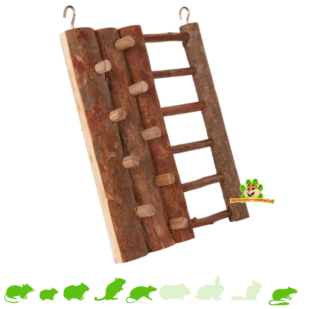 Trixie Forest Climbing Wall