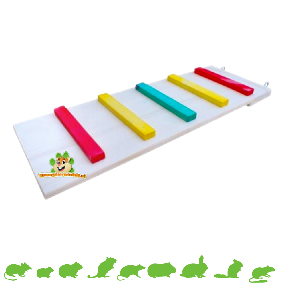 Knaagdierwinkel® Holztreppe Farbe 50 cm