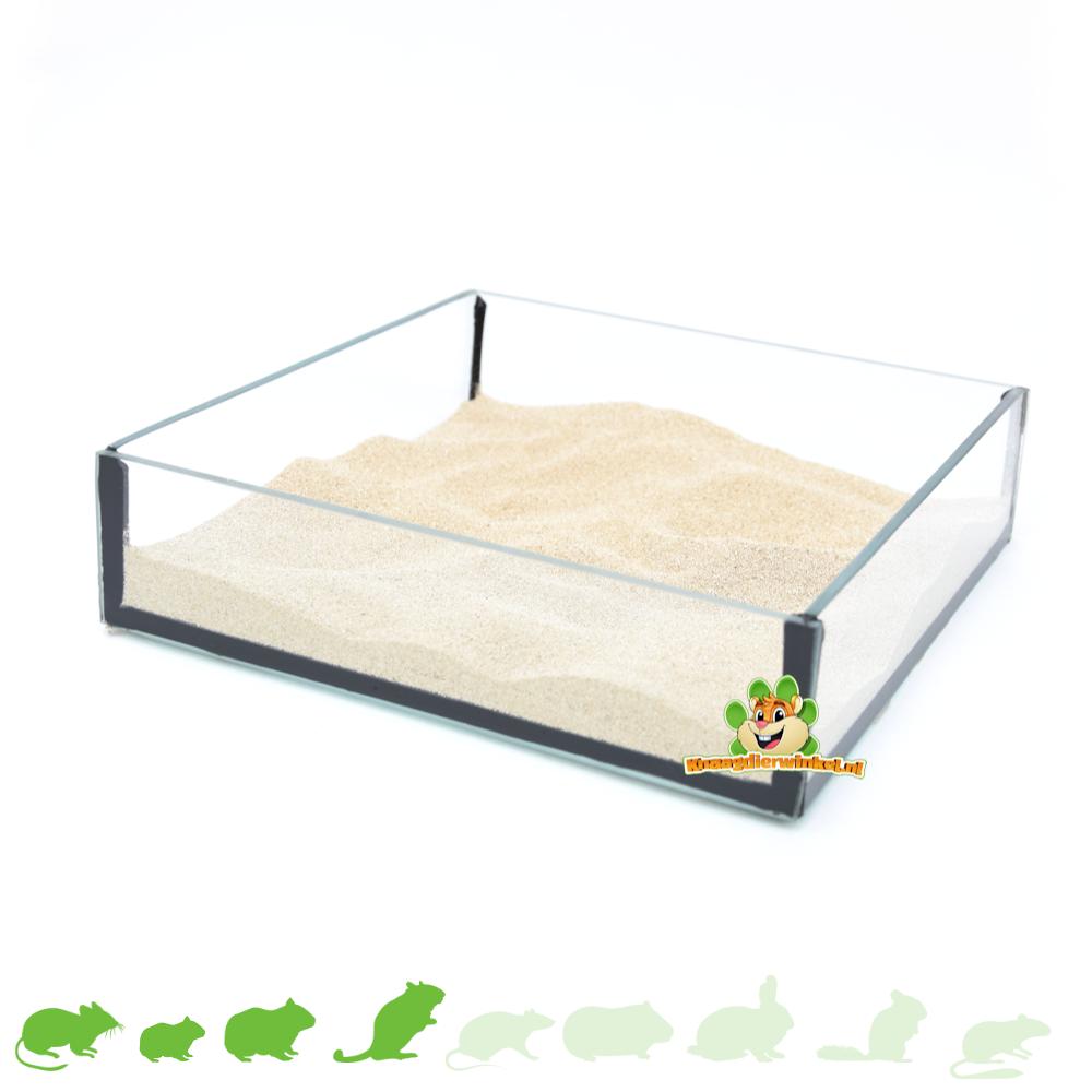 Knaagdierwinkel® Glazen Zandschaal Vierkant 20 cm