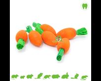 Wooden Nibble Carrots 6 pcs