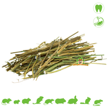 Caraway Sticks 10 grams