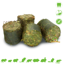 Grainless HEALTH Vital Blokken Huid & Vacht 300 gram