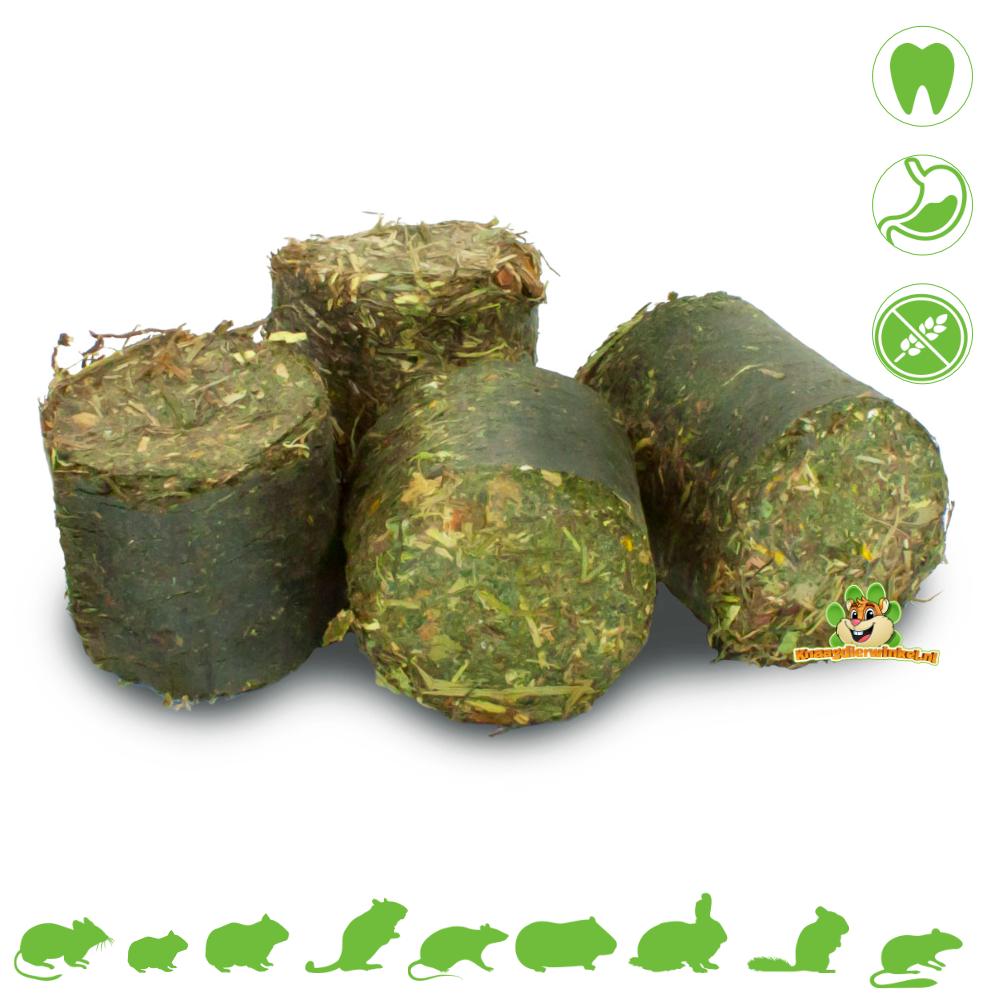 JR Farm Grainless HEALTH Vital Blocks Skin & Coat 300 grams