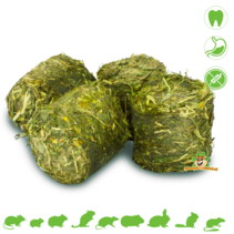 Grainless HEALTH Vital Blokken Maag 300 gram