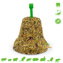 Grainless Hay Bell Hibiscus