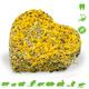 JR Farm Grainless Herbs & Blossom Heart